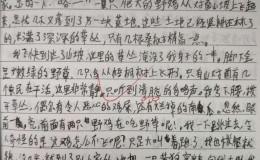 【中学日记】清明节