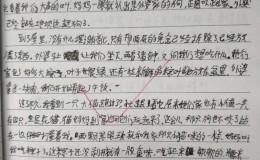 【中学日记】去外婆家