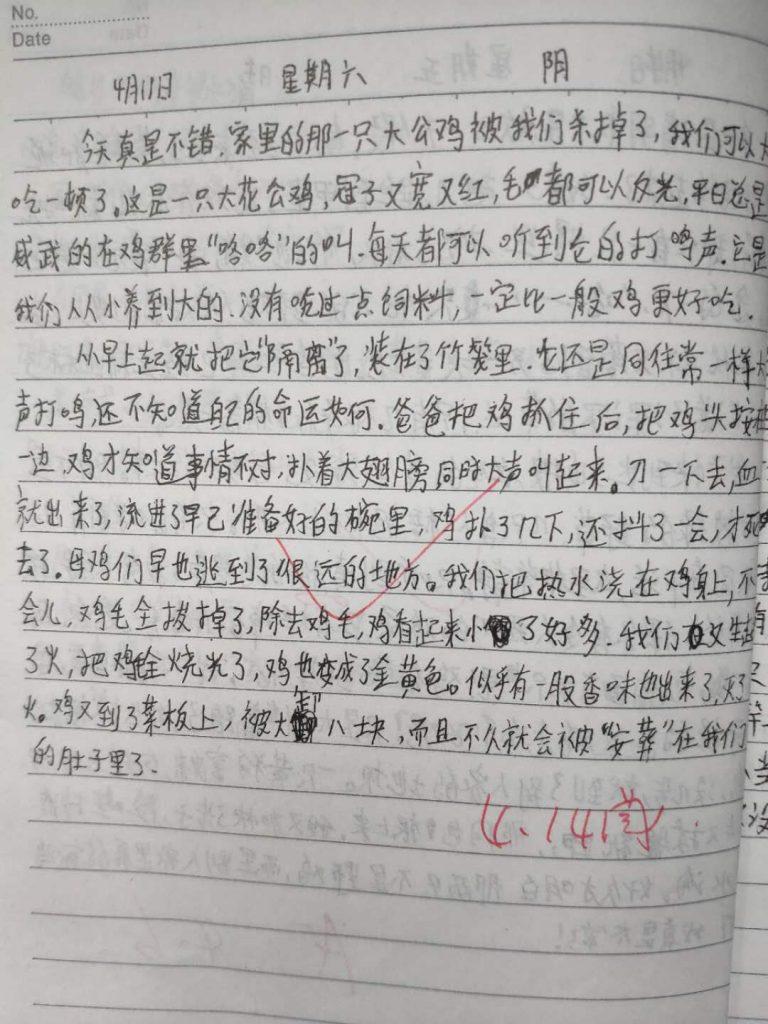 【中学日记】杀鸡