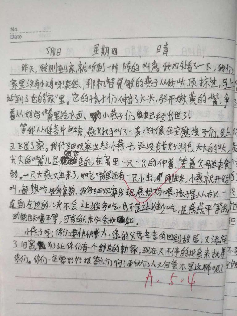 【中学日记】小燕子