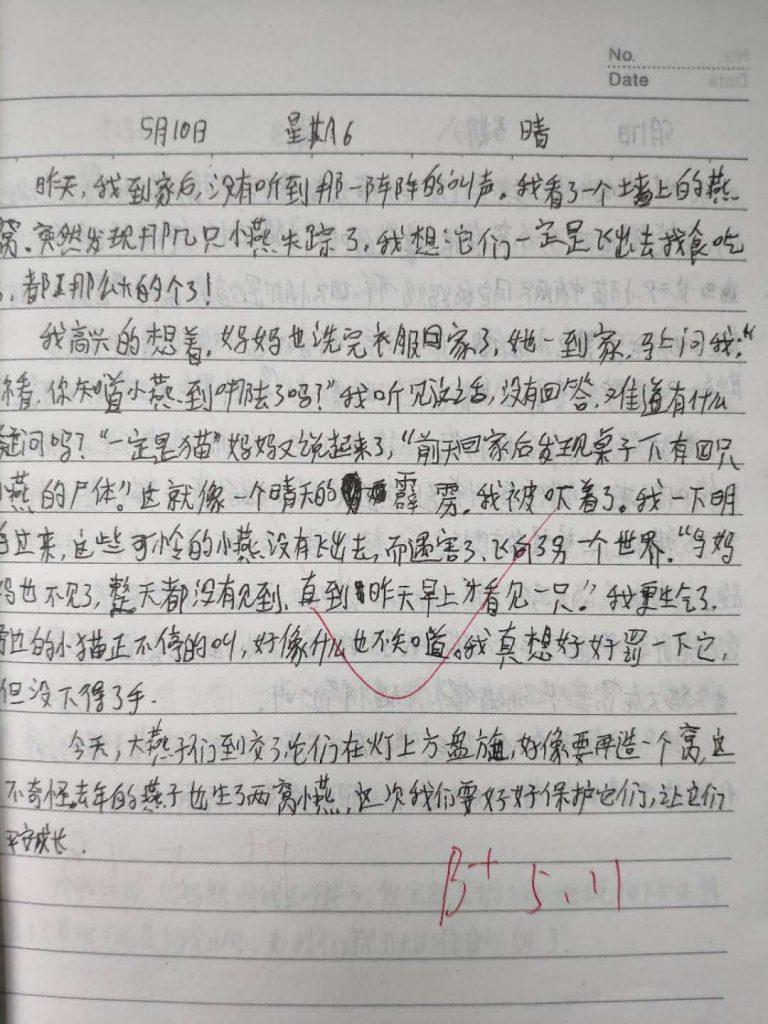 【中学日记】小燕子续集